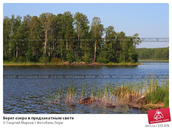 Берег озера в предзакатным свете, фото № 215976, снято 13 августа 2007 г. (c) Георгий Марков / Фотобанк Лори