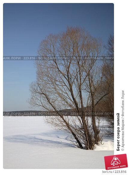 Берег озера зимой, фото № 223816, снято 10 марта 2008 г. (c) Архипова Мария / Фотобанк Лори