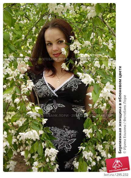 Купить «Беременная женщина в яблоневом цвете», фото № 295232, снято 22 мая 2008 г. (c) Ирина Еськина / Фотобанк Лори