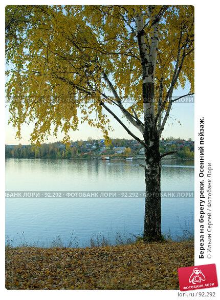 Береза на берегу реки. Осенний пейзаж., фото № 92292, снято 2 октября 2007 г. (c) Ильин Сергей / Фотобанк Лори