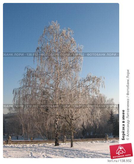 Купить «Берёзка в инее», фото № 138932, снято 28 ноября 2007 г. (c) Александр Литовченко / Фотобанк Лори
