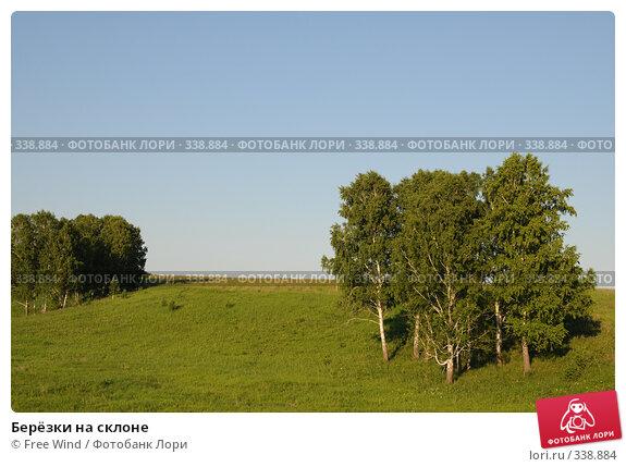 Берёзки на склоне, эксклюзивное фото № 338884, снято 27 июня 2008 г. (c) Free Wind / Фотобанк Лори
