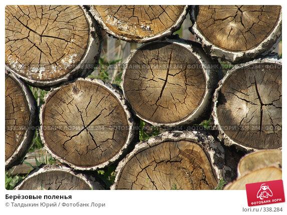 Берёзовые поленья, фото № 338284, снято 18 июня 2008 г. (c) Талдыкин Юрий / Фотобанк Лори