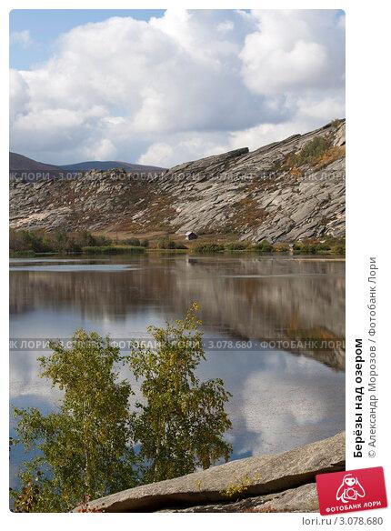 Берёзы над озером. Стоковое фото, фотограф Александр Морозов / Фотобанк Лори