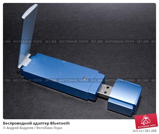 Беспроводной адаптер Bluetooth, фото № 261268, снято 22 апреля 2008 г. (c) Андрей Андреев / Фотобанк Лори