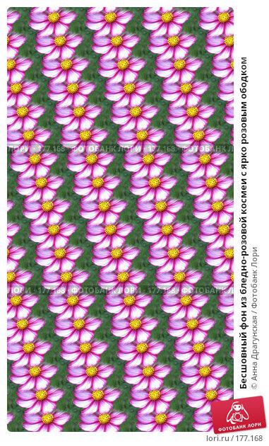 Бесшовный фон из бледно-розовой космеи с ярко розовым ободком, иллюстрация № 177168 (c) Анна Драгунская / Фотобанк Лори