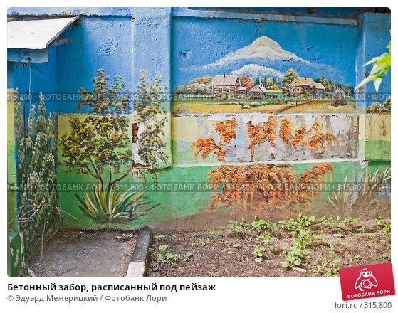 Бетонный забор, расписанный под пейзаж, фото № 315800, снято 7 июня 2008 г. (c) Эдуард Межерицкий / Фотобанк Лори