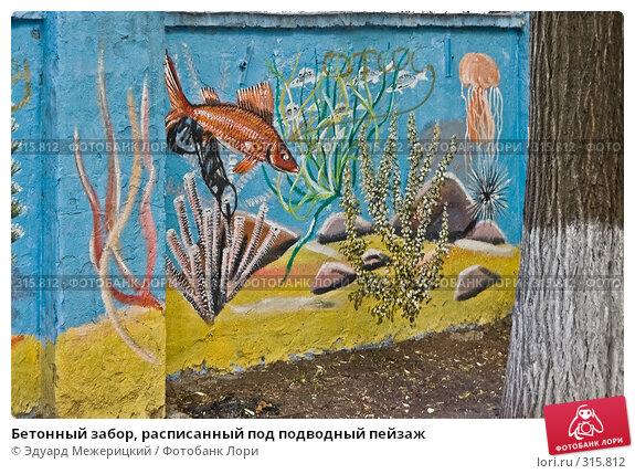 Бетонный забор, расписанный под подводный пейзаж, фото № 315812, снято 7 июня 2008 г. (c) Эдуард Межерицкий / Фотобанк Лори