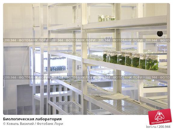 Биологическая лаборатория, фото № 200944, снято 14 ноября 2007 г. (c) Коваль Василий / Фотобанк Лори