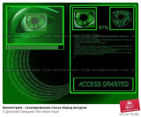 Биометрия - сканирование глаза перед входом, иллюстрация № 73356 (c) Дмитрий Савицкий / Фотобанк Лори