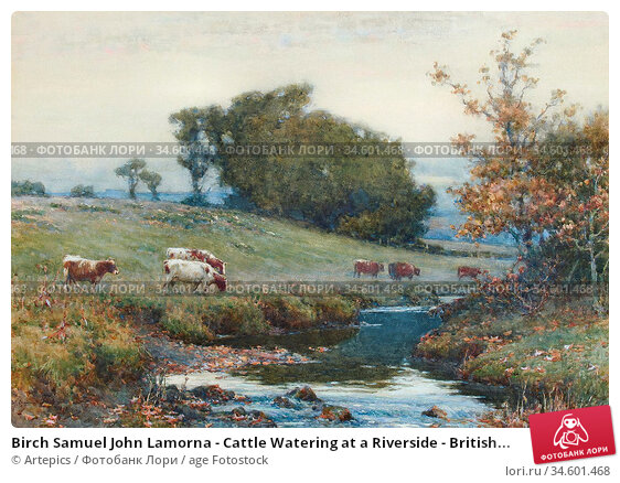 Birch Samuel John Lamorna - Cattle Watering at a Riverside - British... Стоковое фото, фотограф Artepics / age Fotostock / Фотобанк Лори