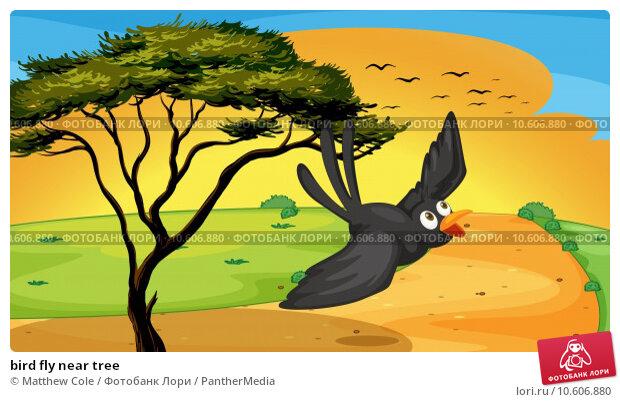 bird fly near tree. Стоковая иллюстрация, иллюстратор Matthew Cole / PantherMedia / Фотобанк Лори