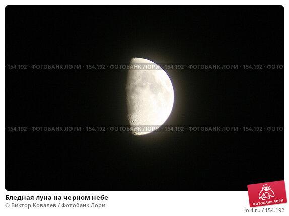 Бледная луна на черном небе, фото № 154192, снято 18 декабря 2007 г. (c) Виктор Ковалев / Фотобанк Лори