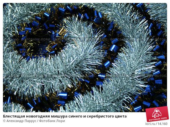 Блестящая новогодняя мишура синего и серебристого цвета, фото № 14160, снято 24 ноября 2006 г. (c) Александр Паррус / Фотобанк Лори
