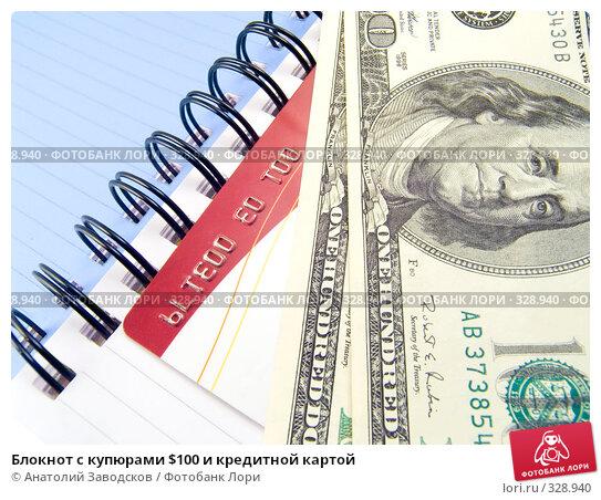 Блокнот с купюрами $100 и кредитной картой, фото № 328940, снято 7 января 2007 г. (c) Анатолий Заводсков / Фотобанк Лори