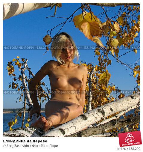 Блондинка на дереве, фото № 138292, снято 18 сентября 2005 г. (c) Serg Zastavkin / Фотобанк Лори