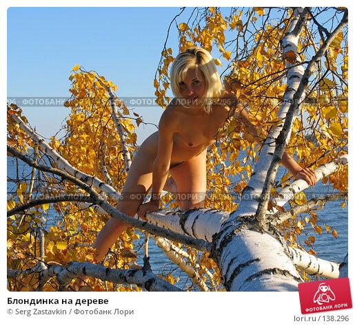 Блондинка на дереве, фото № 138296, снято 18 сентября 2005 г. (c) Serg Zastavkin / Фотобанк Лори