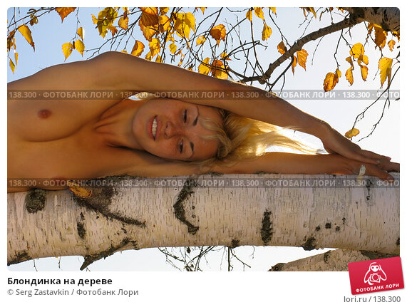 Блондинка на дереве, фото № 138300, снято 18 сентября 2005 г. (c) Serg Zastavkin / Фотобанк Лори