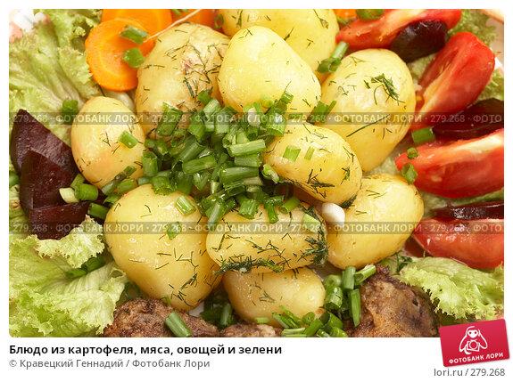 Купить «Блюдо из картофеля, мяса, овощей и зелени», фото № 279268, снято 17 июля 2005 г. (c) Кравецкий Геннадий / Фотобанк Лори