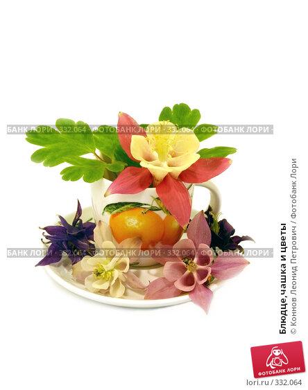 Купить «Блюдце,чашка и цветы», фото № 332064, снято 6 июня 2008 г. (c) Коннов Леонид Петрович / Фотобанк Лори