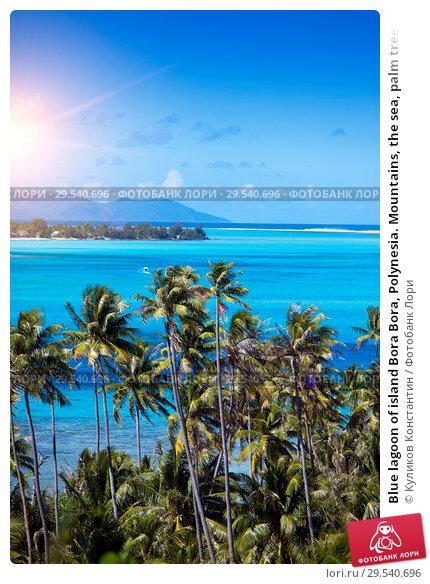 Купить «Blue lagoon of island Bora Bora, Polynesia. Mountains, the sea, palm trees.», фото № 29540696, снято 18 июня 2011 г. (c) Куликов Константин / Фотобанк Лори