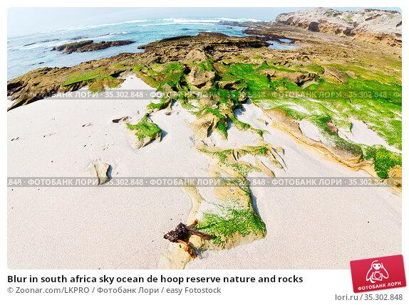Blur in south africa sky ocean de hoop reserve nature and rocks. Стоковое фото, фотограф Zoonar.com/LKPRO / easy Fotostock / Фотобанк Лори