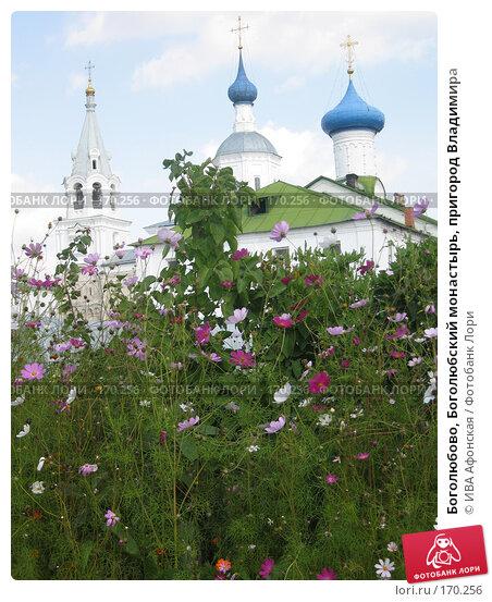 Боголюбово, Боголюбский монастырь, пригород Владимира, фото № 170256, снято 20 августа 2006 г. (c) ИВА Афонская / Фотобанк Лори