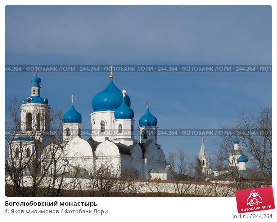 Боголюбовский монастырь, фото № 244264, снято 2 апреля 2008 г. (c) Яков Филимонов / Фотобанк Лори
