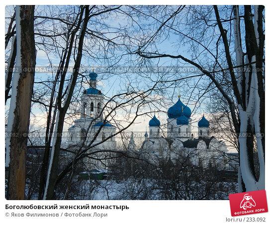 Боголюбовский женский монастырь, фото № 233092, снято 21 марта 2008 г. (c) Яков Филимонов / Фотобанк Лори