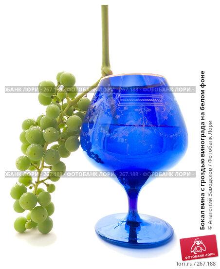 Бокал вина с гроздью винограда на белом фоне, фото № 267188, снято 12 августа 2007 г. (c) Анатолий Заводсков / Фотобанк Лори