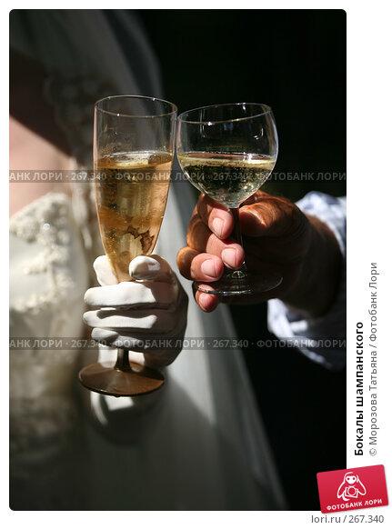 Купить «Бокалы шампанского», фото № 267340, снято 18 августа 2007 г. (c) Морозова Татьяна / Фотобанк Лори