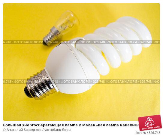 Большая энергосберегающая лампа и маленькая лампа накаливания на желтом фоне, фото № 326748, снято 2 февраля 2007 г. (c) Анатолий Заводсков / Фотобанк Лори