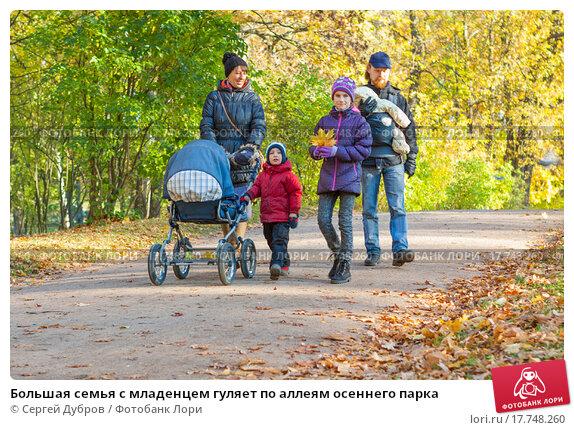Купить «Большая семья с младенцем гуляет по аллеям осеннего парка», фото № 17748260, снято 11 октября 2015 г. (c) Сергей Дубров / Фотобанк Лори