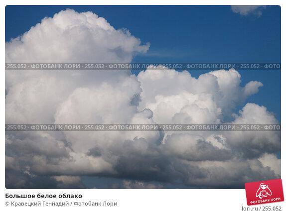 Большое белое облако, фото № 255052, снято 30 июня 2004 г. (c) Кравецкий Геннадий / Фотобанк Лори