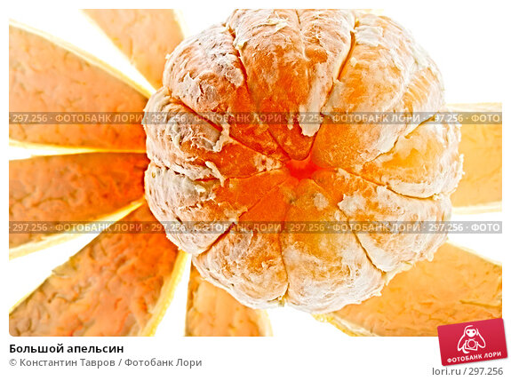 Купить «Большой апельсин», фото № 297256, снято 5 апреля 2008 г. (c) Константин Тавров / Фотобанк Лори