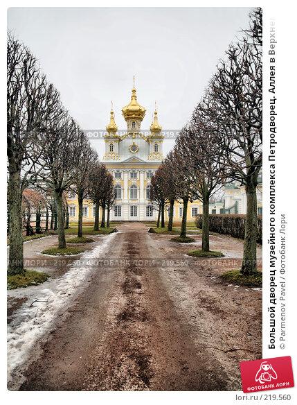 Большой дворец музейного комплекса Петродворец. Аллея в Верхнем саду, фото № 219560, снято 13 февраля 2008 г. (c) Parmenov Pavel / Фотобанк Лори