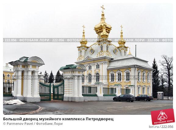 Купить «Большой дворец музейного комплекса Петродворец», фото № 222056, снято 13 февраля 2008 г. (c) Parmenov Pavel / Фотобанк Лори