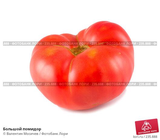 Большой помидор, фото № 235888, снято 28 октября 2016 г. (c) Валентин Мосичев / Фотобанк Лори