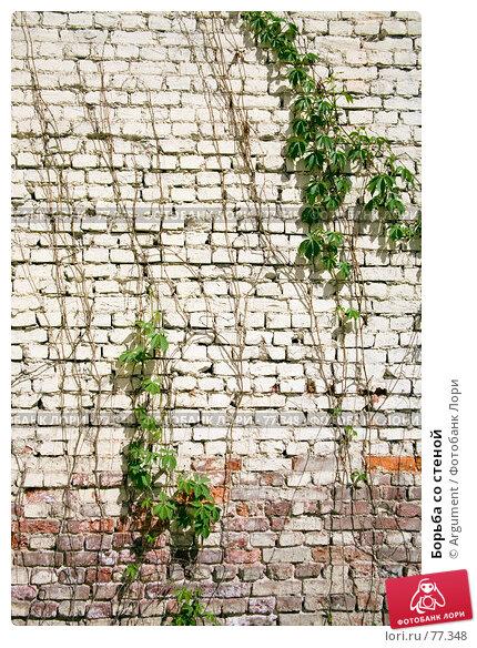 Борьба со стеной, фото № 77348, снято 21 мая 2007 г. (c) Argument / Фотобанк Лори