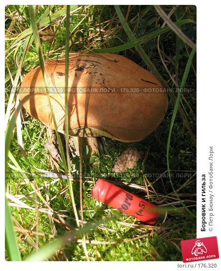 Боровик и гильза, фото № 176320, снято 29 августа 2003 г. (c) Петр Бюнау / Фотобанк Лори