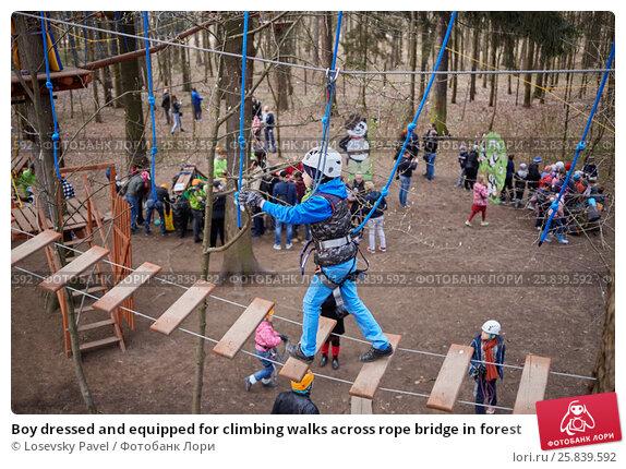 Купить «Boy dressed and equipped for climbing walks across rope bridge in forest», фото № 25839592, снято 24 апреля 2016 г. (c) Losevsky Pavel / Фотобанк Лори