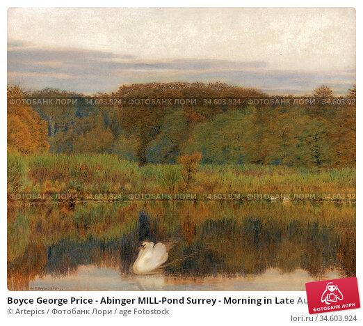 Boyce George Price - Abinger MILL-Pond Surrey - Morning in Late Autumn... Стоковое фото, фотограф Artepics / age Fotostock / Фотобанк Лори