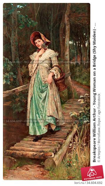 Breakspeare William Arthur - Young Woman on a Bridge (Shy Maiden) - ... Стоковое фото, фотограф Artepics / age Fotostock / Фотобанк Лори