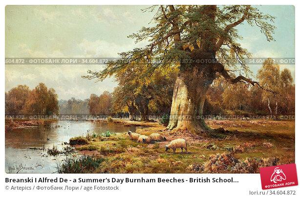 Breanski I Alfred De - a Summer's Day Burnham Beeches - British School... Стоковое фото, фотограф Artepics / age Fotostock / Фотобанк Лори