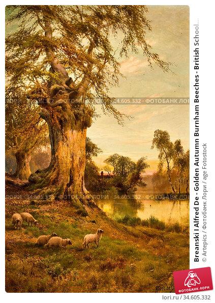 Breanski I Alfred De - Golden Autumn Burnham Beeches - British School... Стоковое фото, фотограф Artepics / age Fotostock / Фотобанк Лори