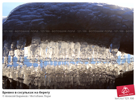 Бревно в сосульках на берегу, фото № 121100, снято 11 ноября 2007 г. (c) Алексей Баринов / Фотобанк Лори