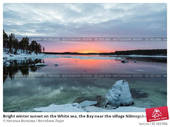 Bright winter sunset on the White sea, the Bay near the village Nilmoguba, Karelia, Russia. Стоковое фото, фотограф Наталья Волкова / Фотобанк Лори
