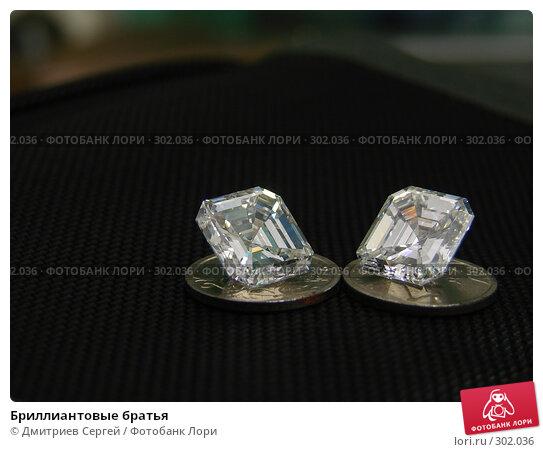 Бриллиантовые братья, фото № 302036, снято 17 ноября 2006 г. (c) Дмитриев Сергей / Фотобанк Лори