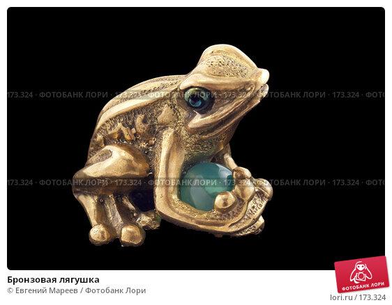 Купить «Бронзовая лягушка», фото № 173324, снято 10 января 2008 г. (c) Евгений Мареев / Фотобанк Лори