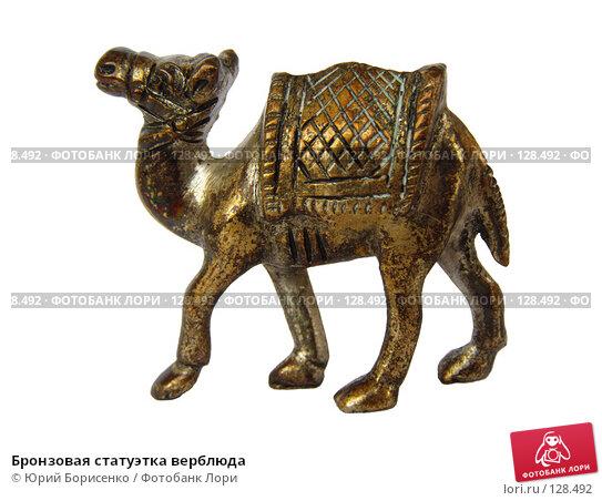 Бронзовая статуэтка верблюда, фото № 128492, снято 30 апреля 2007 г. (c) Юрий Борисенко / Фотобанк Лори